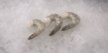 Load image into Gallery viewer, Frozen Shrimp -Tail on 2 lbs Pack