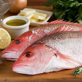 WHOLE SNAPPER FROZEN 1.5/2 LB