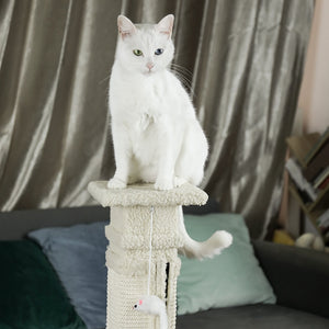 Cat Scratching Tree Condo, Good Quality