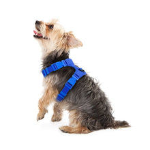 Load image into Gallery viewer, Dog Harness For Small Dogs