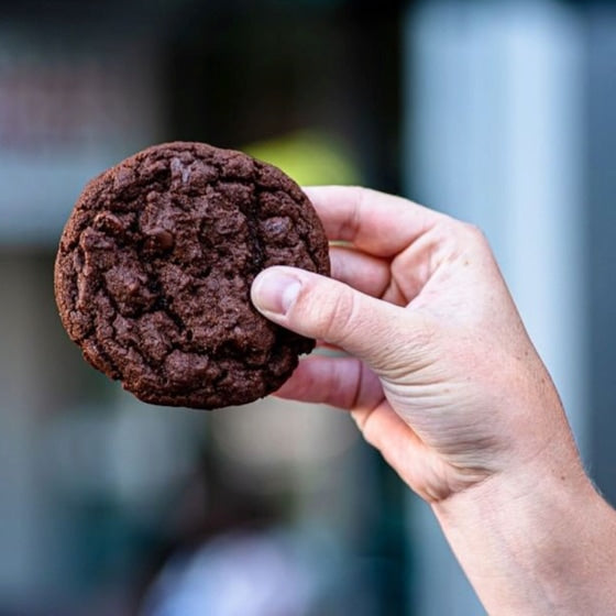 A hand holding a chocolate cookie