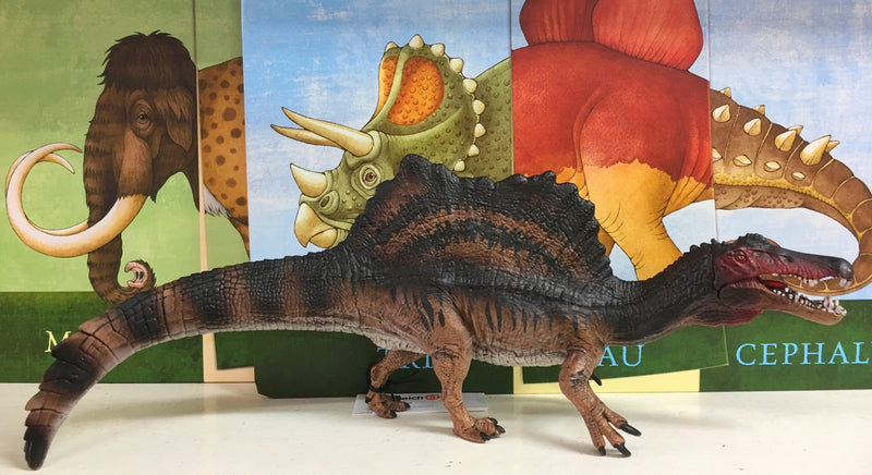 A wonderful new Dinosaur in the Schleich series Lovely brown colours and moveable mouth Encourages imaginative play Size length 30cm , height 12cm, width 6.5cm Recommended age 4-12 years