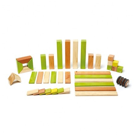 tegu-magnetic-wooden-blocks-jungle