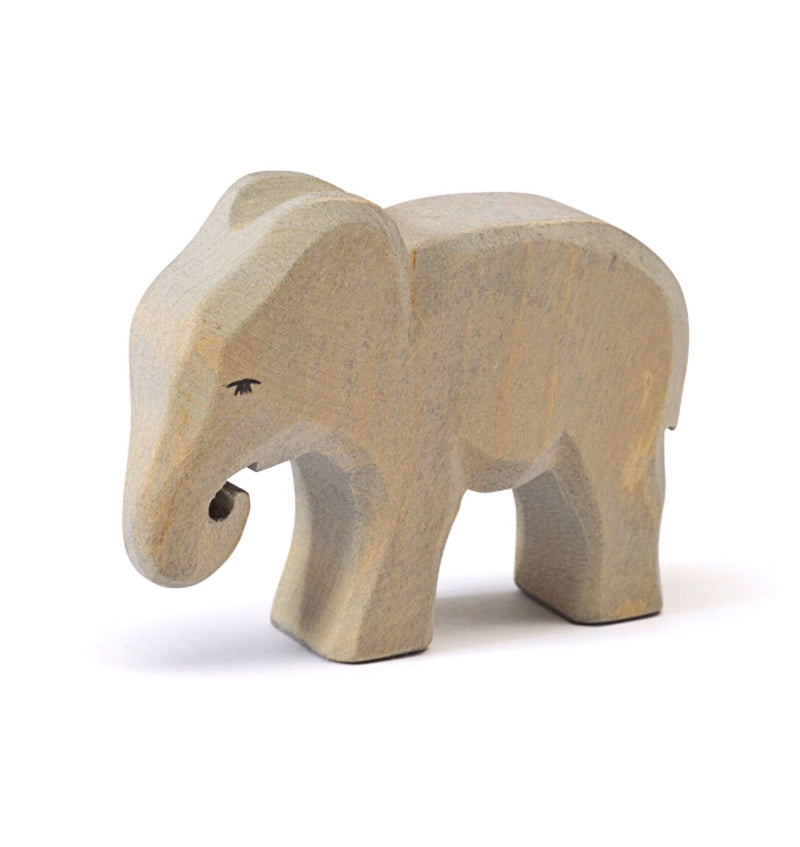 Ostheimer - Elephant small eating