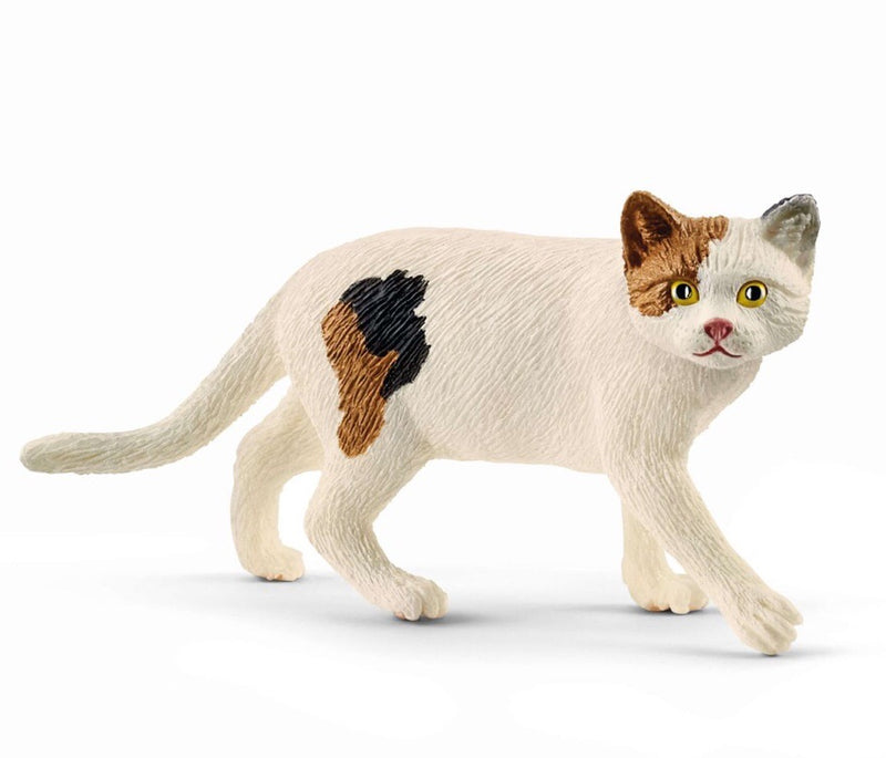 Schleich American Shorthair Cat is a popular cat for imaginative play. Recommneded for ages 3-8 years