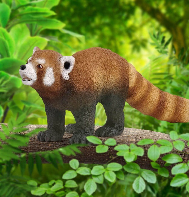 The red panda from Schleich has a tic striped tail, red brown fur and powerful paws with sharp claws. The red panda is a mammal that lives in the eastern Himalayas and south west China. Size 9 cm x 5 cm x 2.5 cm  Recommended age 3-8 years
