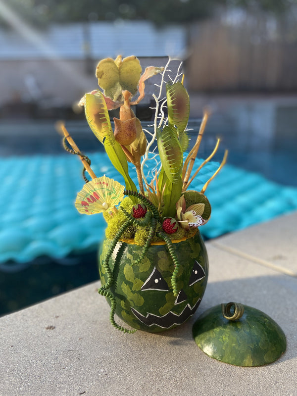 SummerWeen Watermelon Punch Bowl - Tiki Cocktail Plant