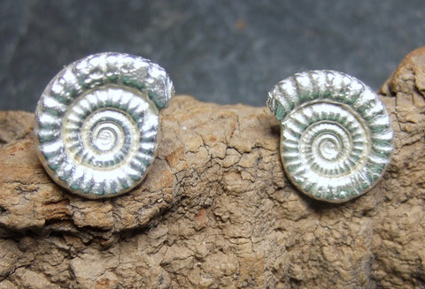 Ammonite stud and drop Sterling silver earrings