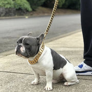 Gold Cuban Dog Leash With Leather Handle Bulldog - Nekua - 3