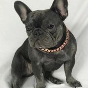 Rose Gold Cuban Dog Chain Collar - Nekua - 3