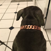 Rose Gold Cuban Dog Chain Collar - Nekua - 5