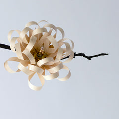 GEORGINA CHANDELIER MAPLE