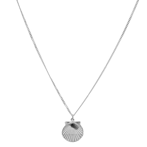 L shell Pendant & Thick Necklace