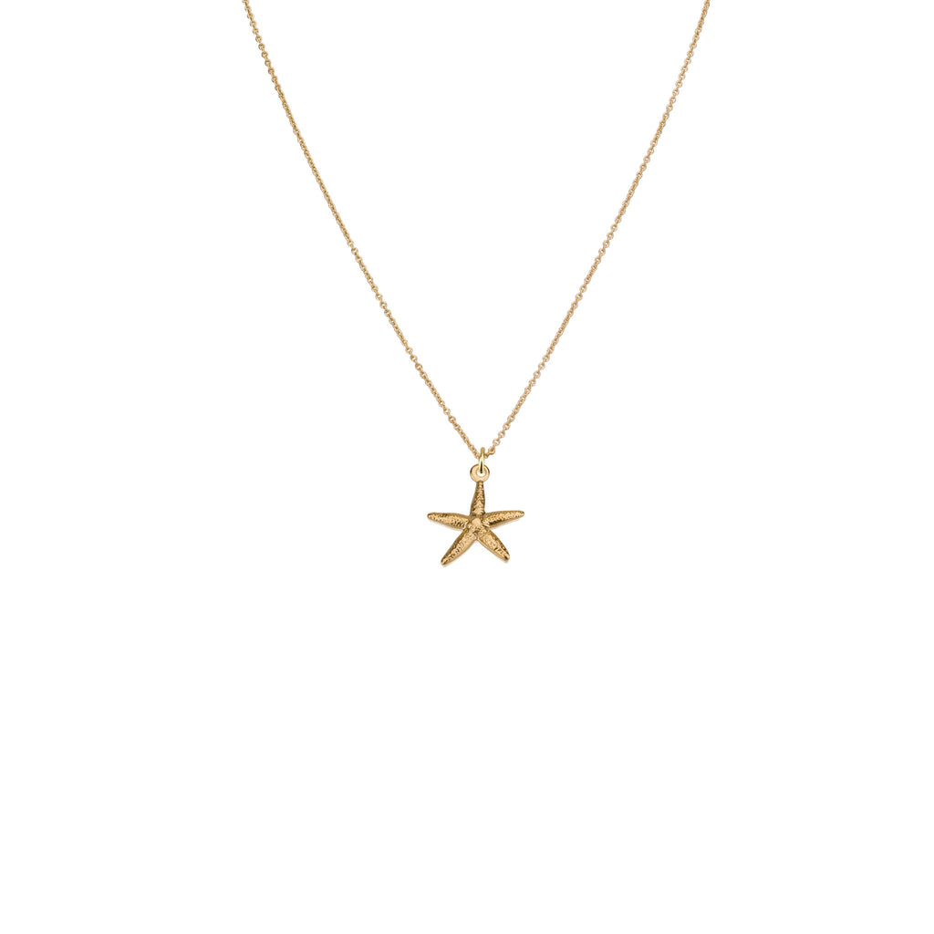 Necklaces - Starfish Pendant & Helen Chain Necklace