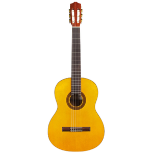 Cordoba C1 Protege Acoustic Full Size Classical Guitar