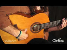 Load and play video in Gallery viewer, Cordoba C5-CE Acoustic-Electric Full Size Classical Guitar