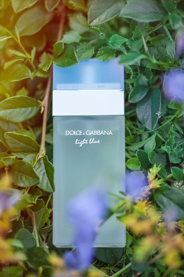 Dolce & Gabbana Light Blue 100 ml Eau De Toilette Spray for Women