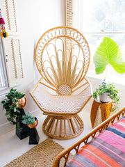 Zahra Peacock Chair - Project Nursery