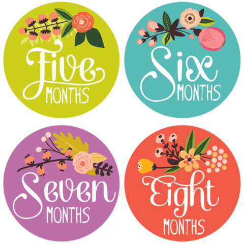 Little Artist Monthly Stickers  - The Project Nursery Shop - 2