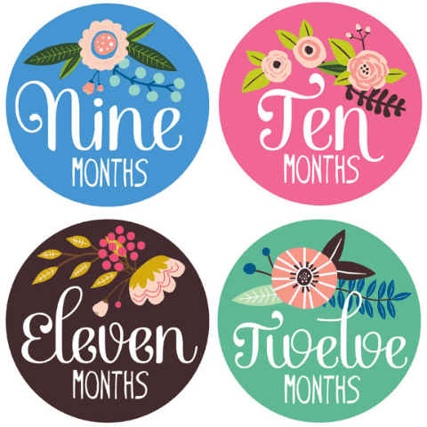 Little Artist Monthly Stickers  - The Project Nursery Shop - 3