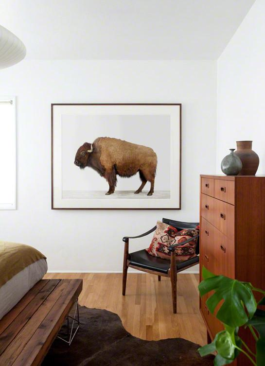 American Buffalo Print - Project Nursery