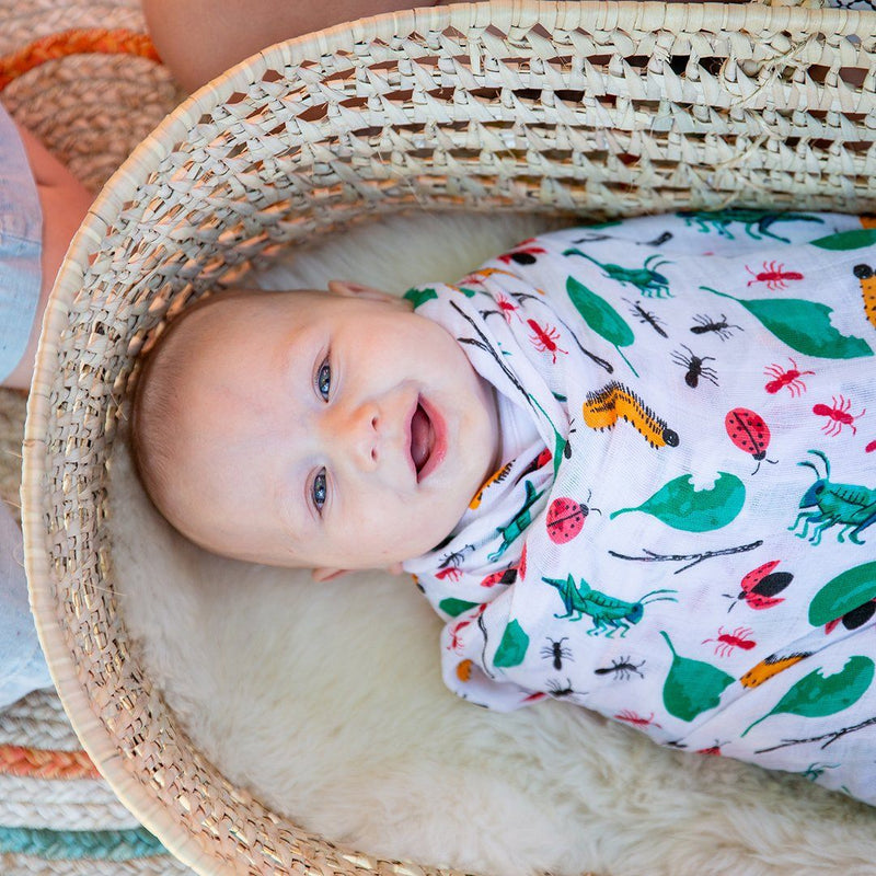 Bugs + Picnic Swaddle Set - Project Nursery