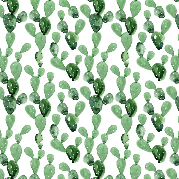 Watercolor Cactus Wallpaper Project Nursery