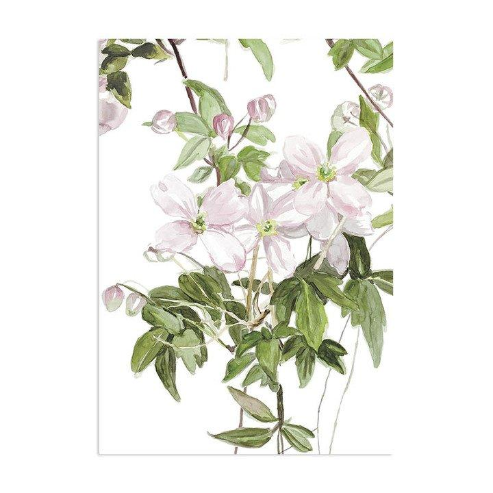 Classic Clematis Mural Wallpaper - Project Nursery