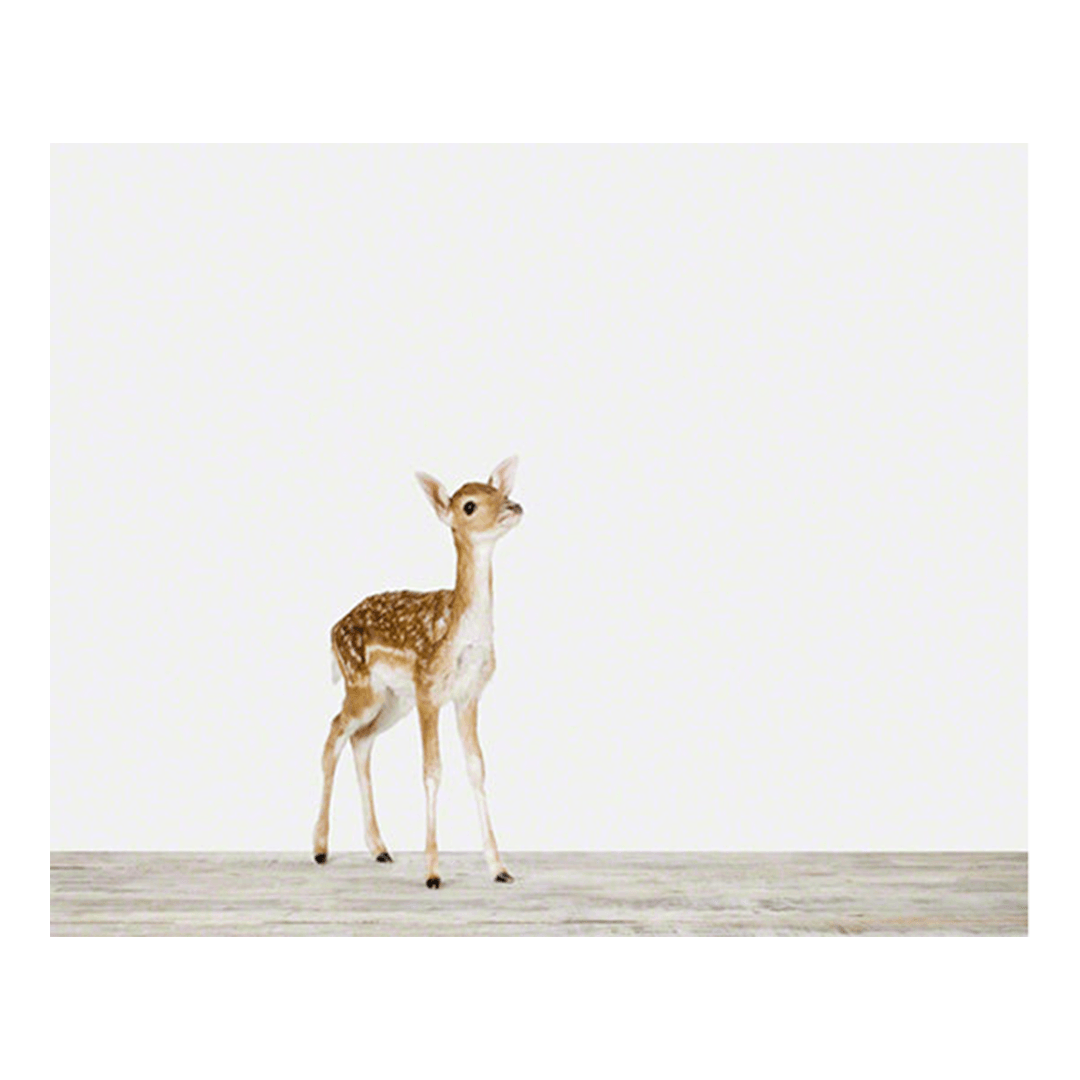 Baby Deer Print - Project Nursery
