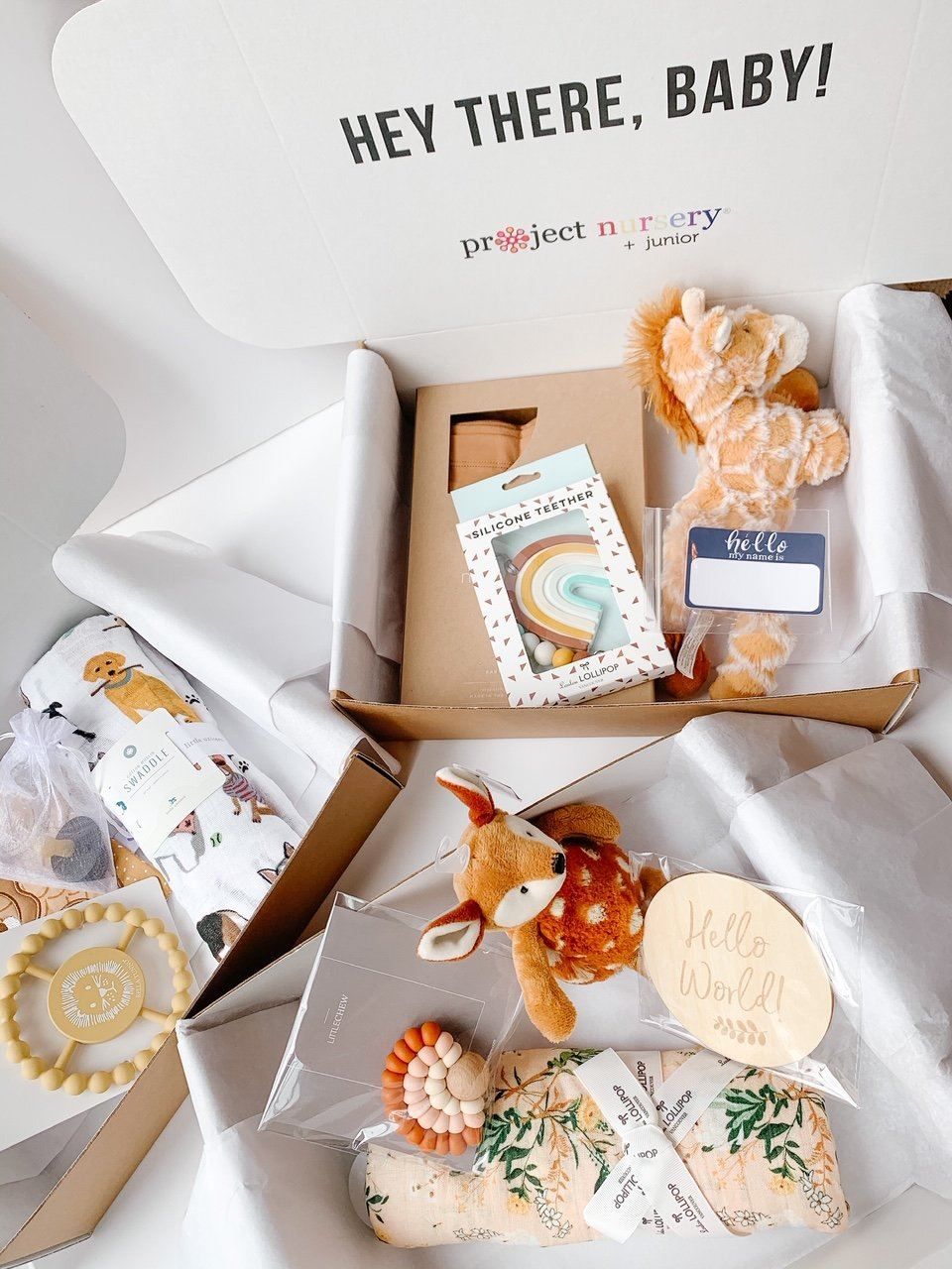 PN Baby Shower Gift Box - Project Nursery
