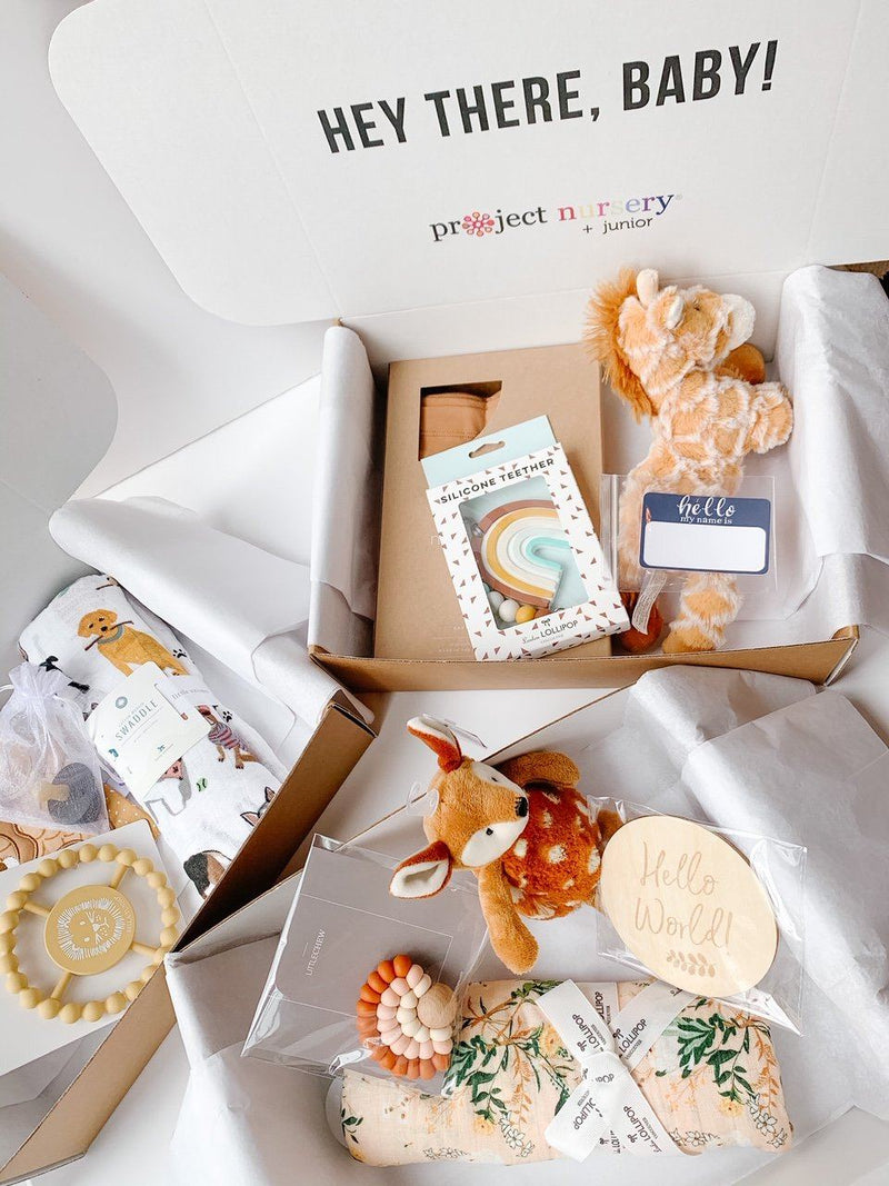 Baby Shower Gift Box by Project Nursery - Project Nursery