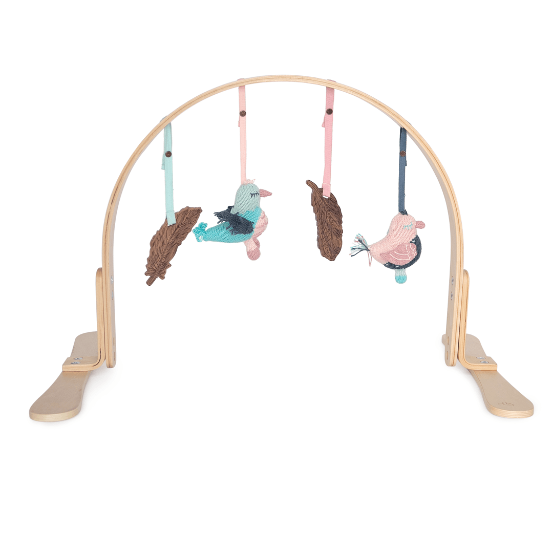 Feathers Play Gym - Project Nursery