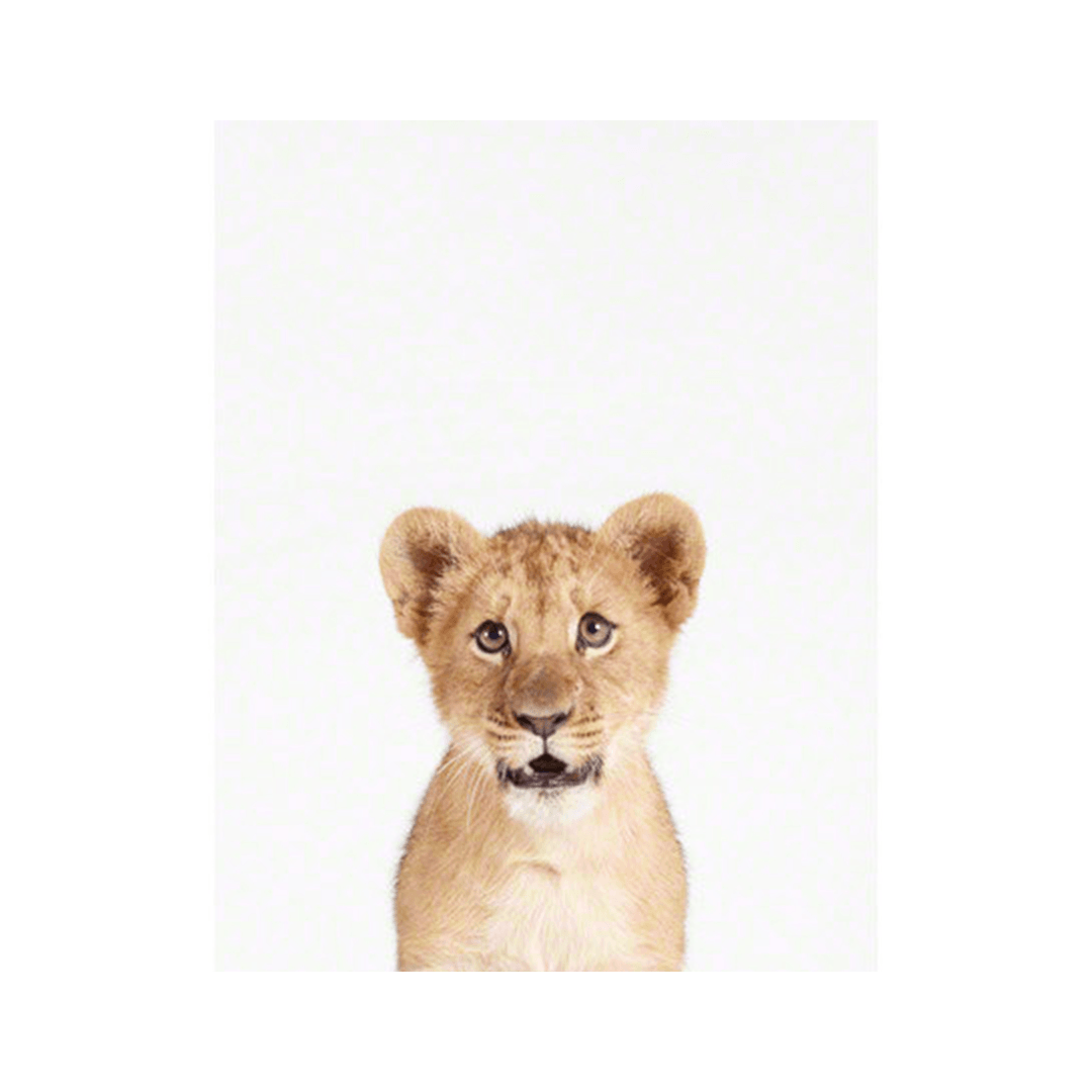 Little Leo S Nursery Fit For A King: Lion Cub Little Darling Print