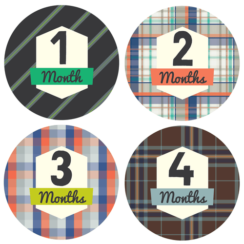Little Gentleman Monthly Stickers - Project Nursery