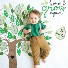 Here I Grow Again Milestone Blanket and Card Set - Project Nursery