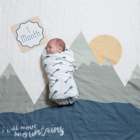 Organic Cotton Muslin Swaddle Blanket - I Prayed for this Child