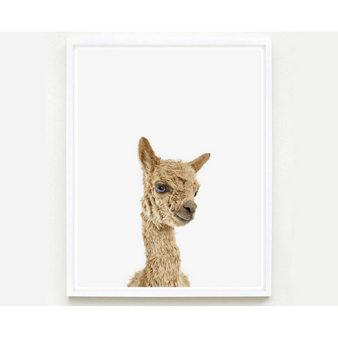 Baby Alpaca Little Darling Print - Project Nursery