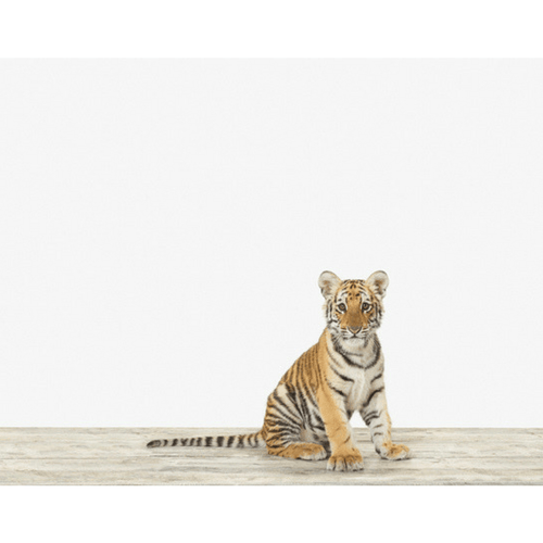 Baby Bengal Tiger Print - Project Nursery