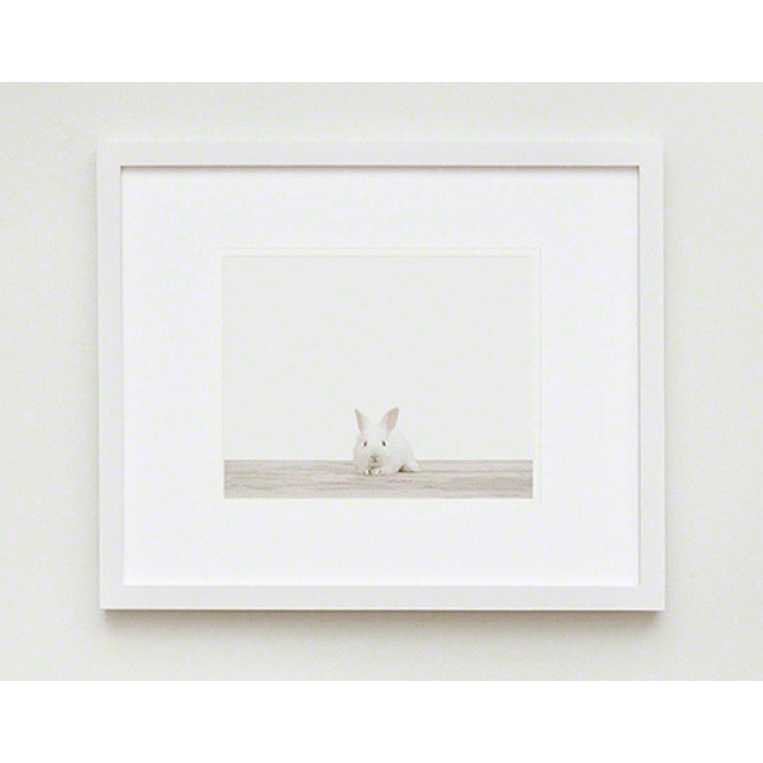 Baby Bunny No. 1 Print - Project Nursery