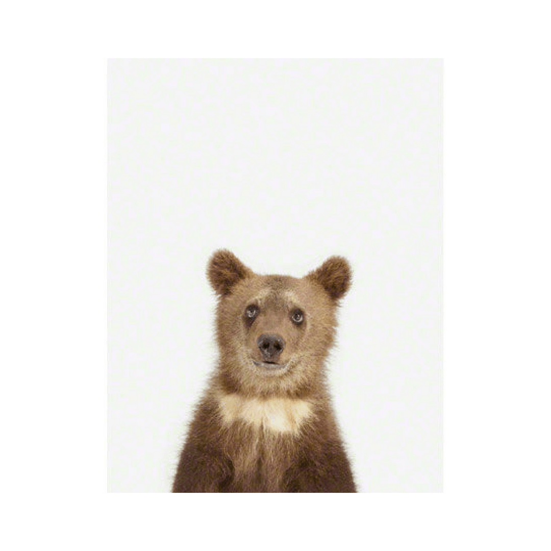 Bear Cub Little Darling Print - 11