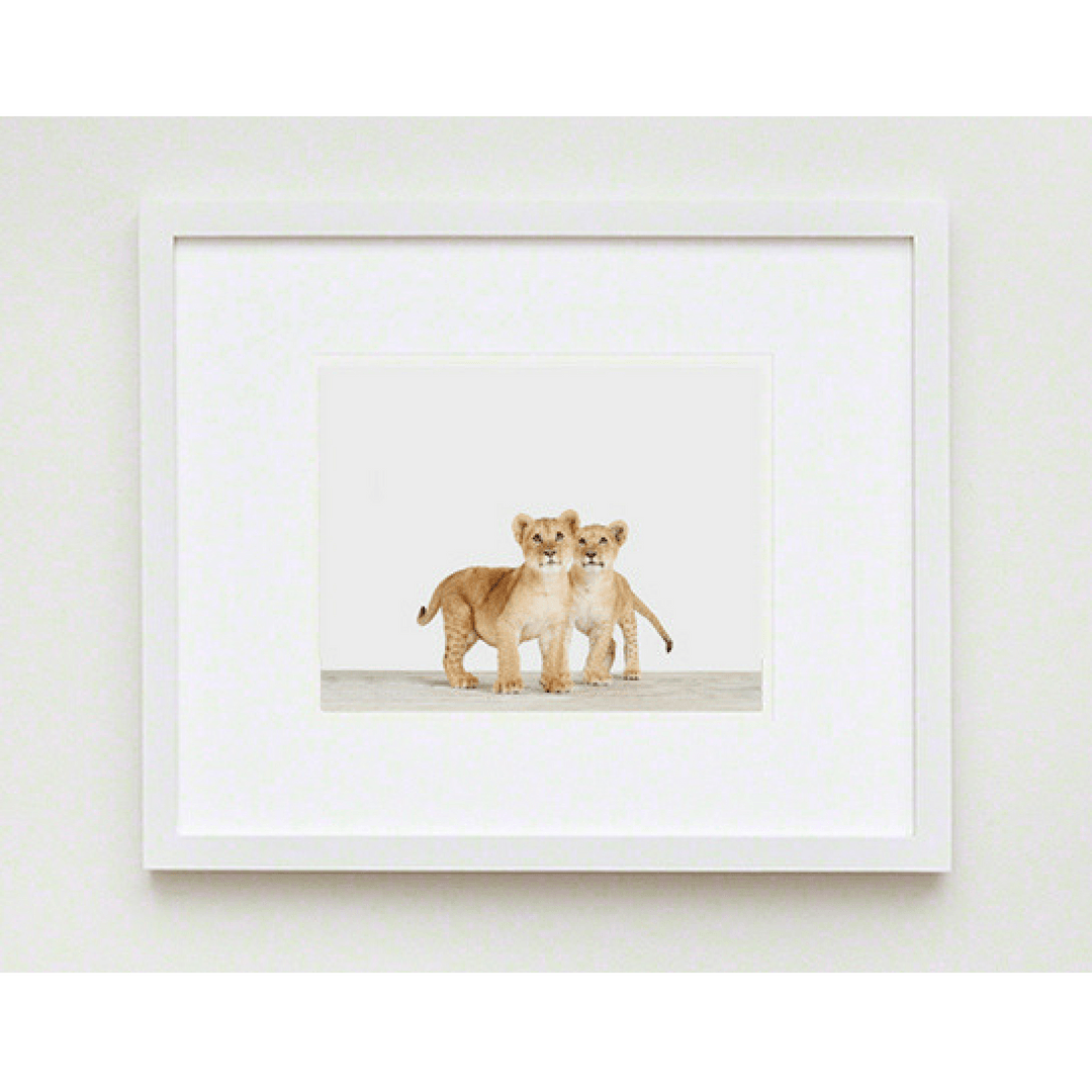 Lion Cub Twins Print - Project Nursery