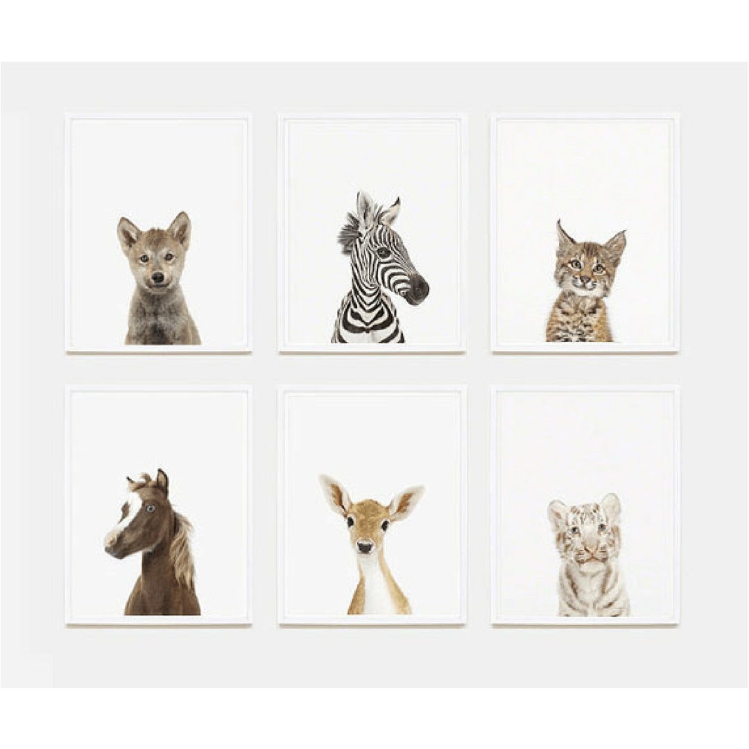 Baby Horse Little Darling Print - Project Nursery