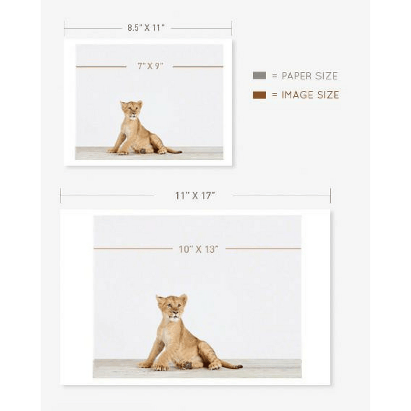 Baby Camel Print - Project Nursery