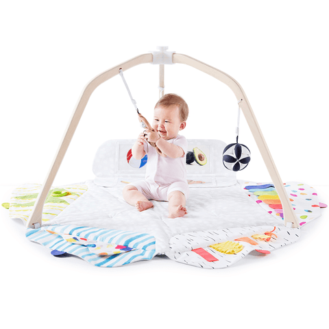 Lolly 3-in-1 Convertible Crib with Toddler Bed Conversion Kit in Navy