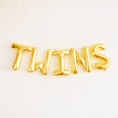 TWINS Banner - Project Nursery