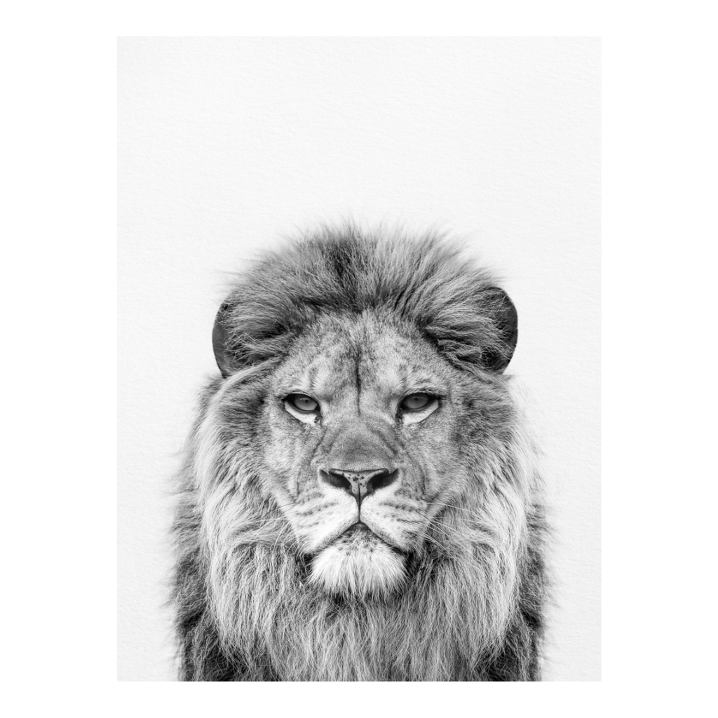 Black and White Lion Print - Project Nursery