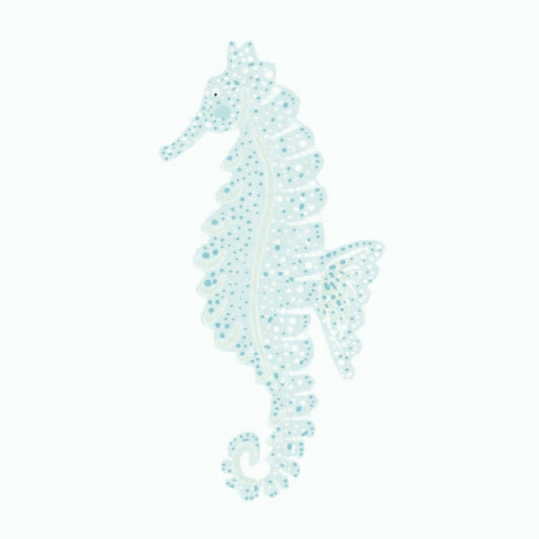 Seahorse Wall Decals - Multiple Colors - Project Nursery
