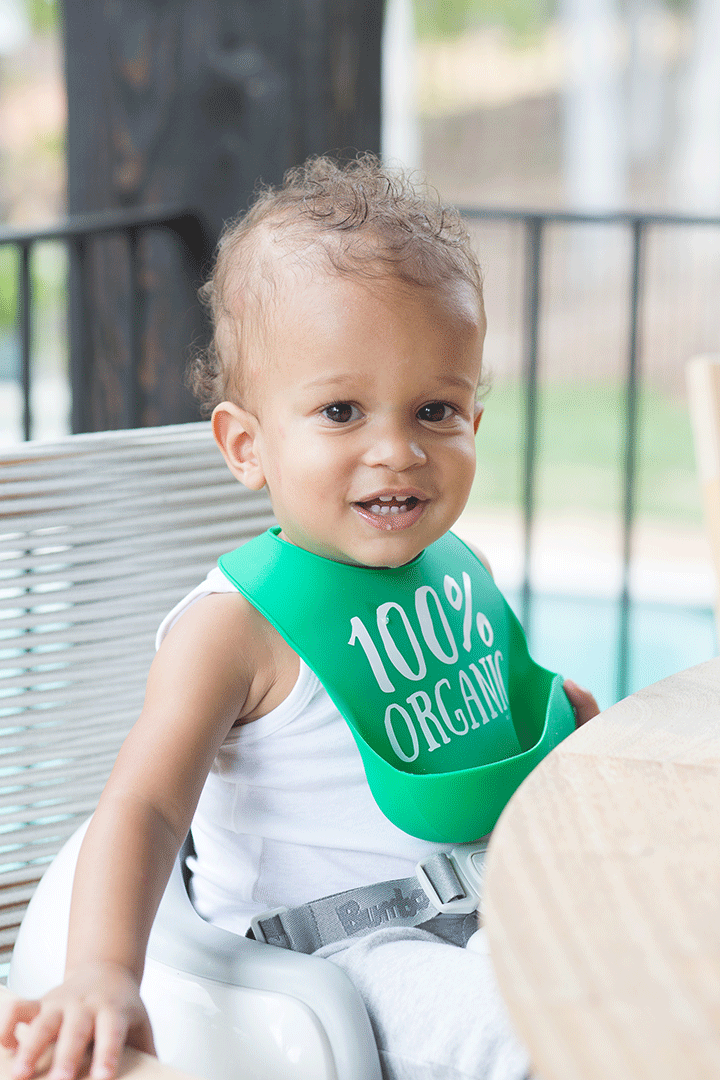 100-Percent Organic Wonder Bib - Project Nursery
