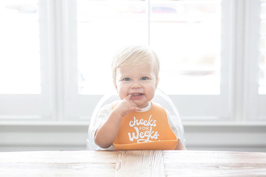 Cheeks for Weeks Wonder Bib - Project Nursery
