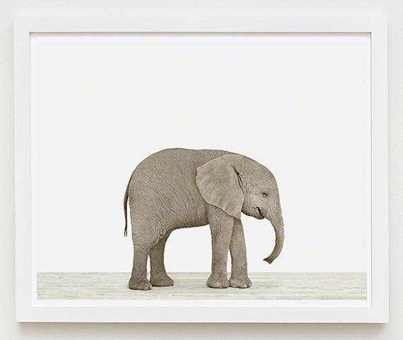 Baby Elephant Print - Project Nursery